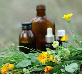 Where Does Herbal Medicine Fit in Today's World?