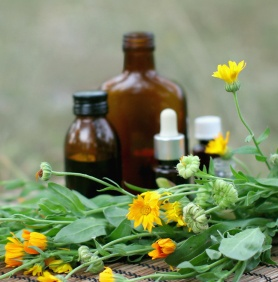 Herbal Medicine Frequently Asked Questions