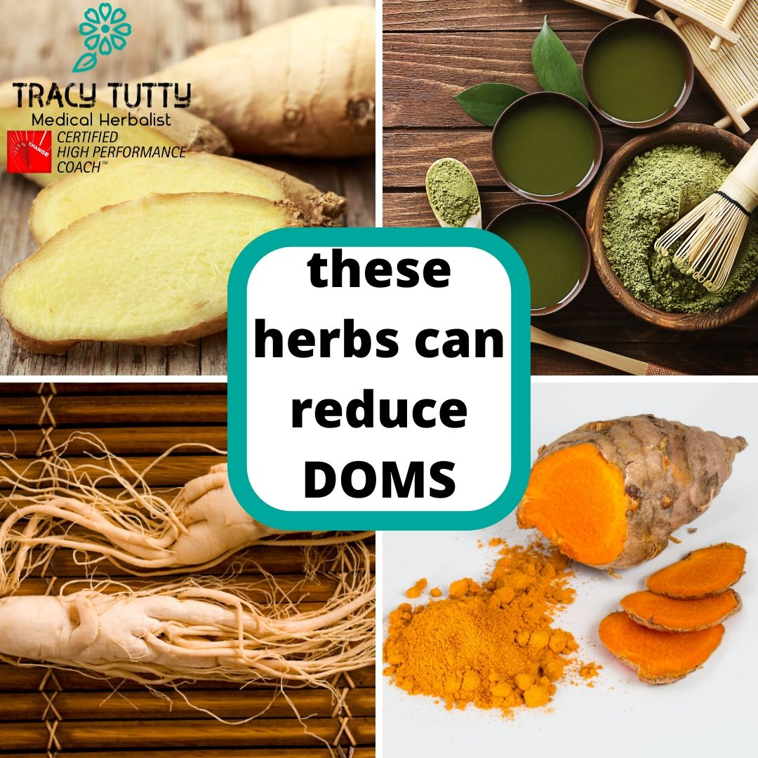 Which herbs reduce DOMS?