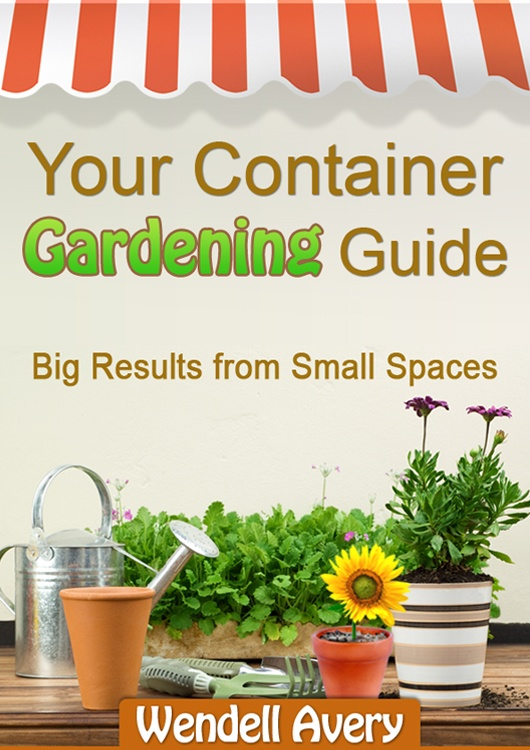 Your Guide to Container Gardening