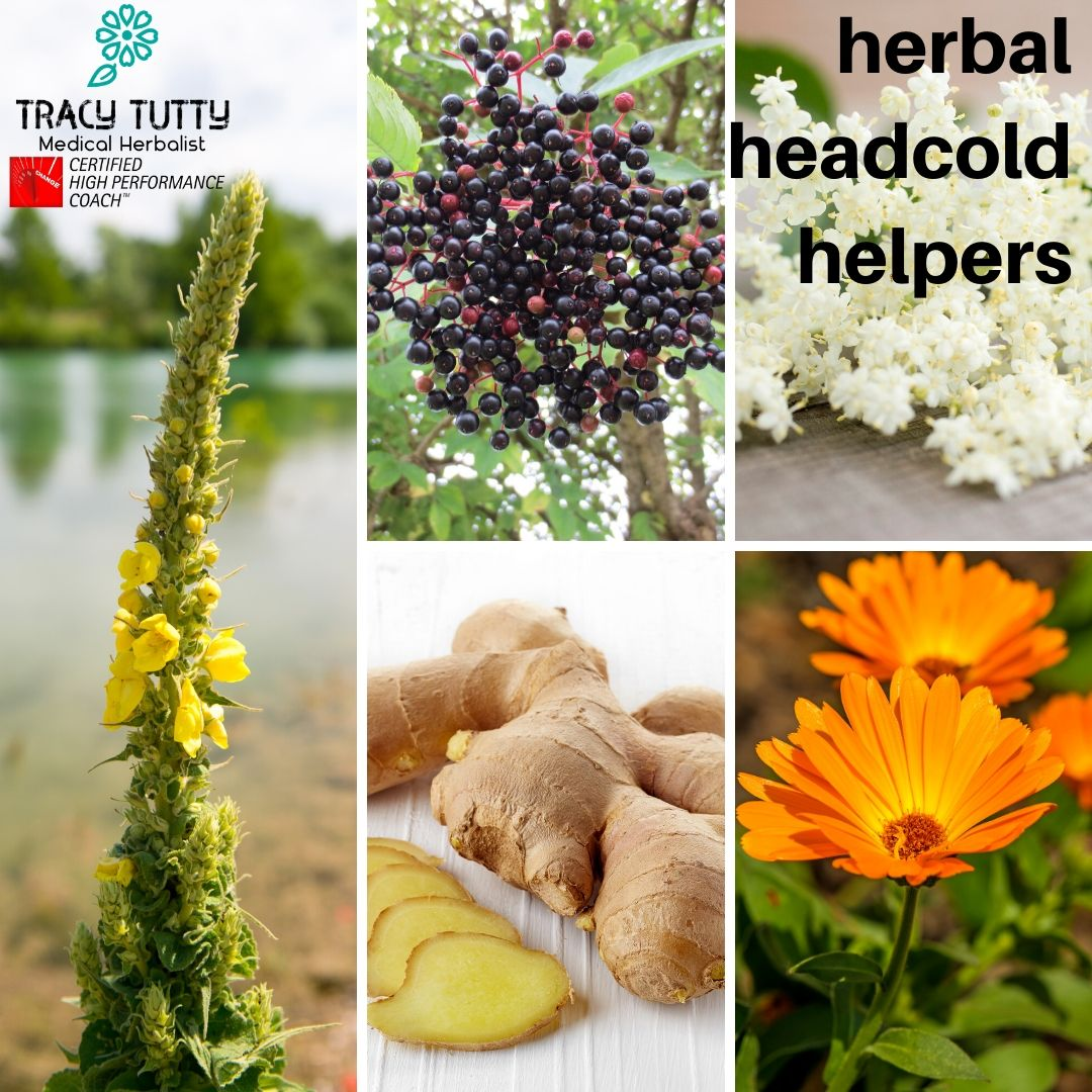 Herbs that can help when you have a headcold