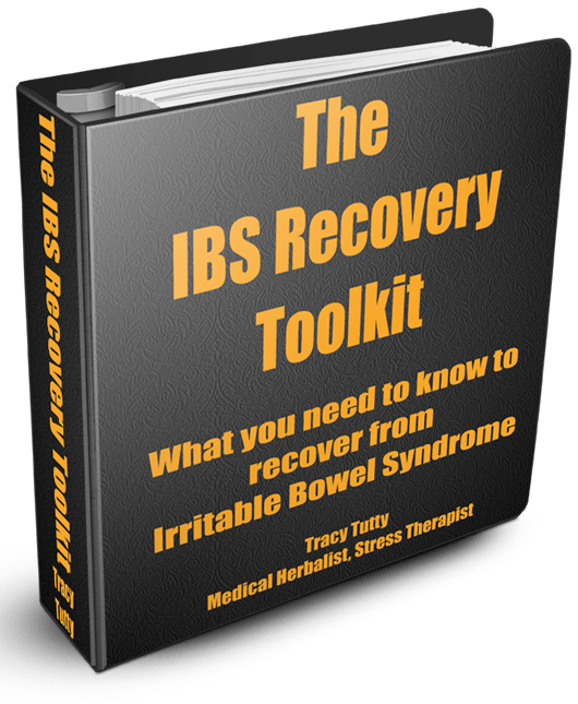 IBS REcovery Toolkit